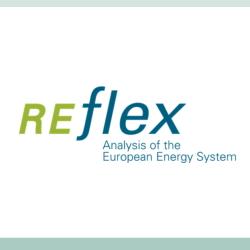16p06 REFLEX 2